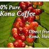 100% Pure Kona Coffee Beans - direct from Kona.